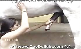 Sexy latina Monica sucks & fucks her horse The birth of a teeny horse slut