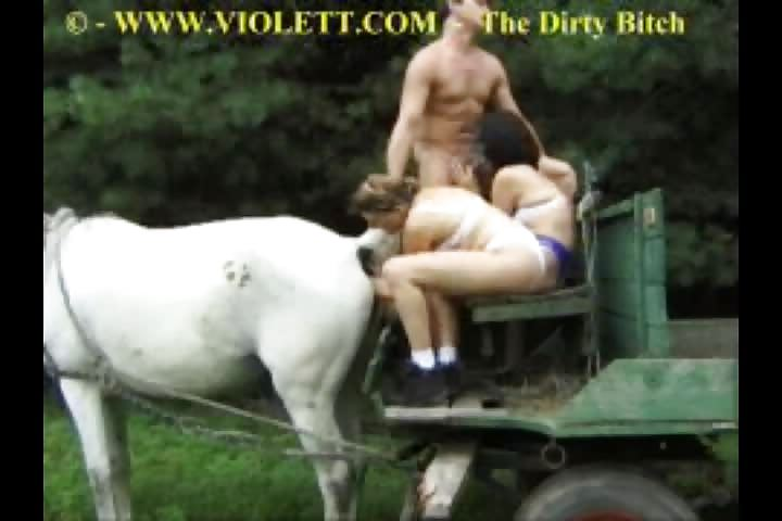 Girl fisting a horse